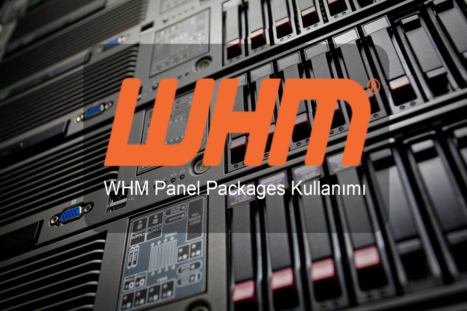 WHM Panel Packages Kullanımı